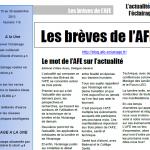 Les Brèves de l'AFE n°115